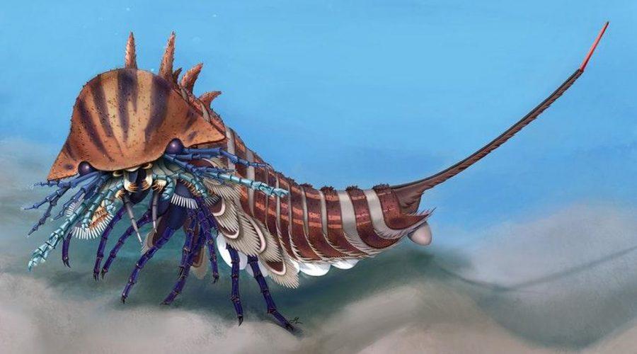 Обнаружен древний морской хищник с тремя рядами зубов