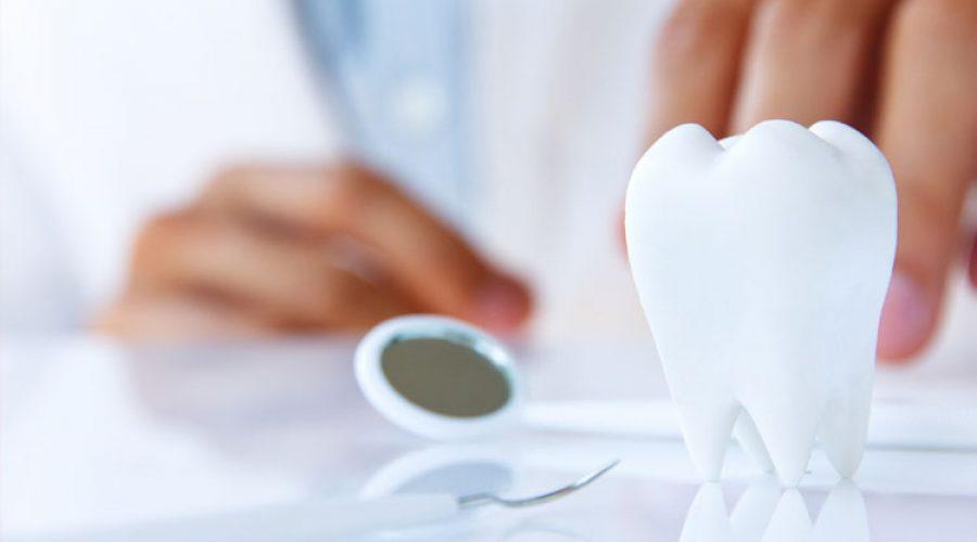 Направления в стоматологии