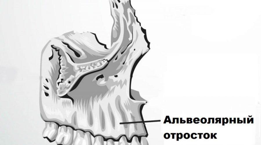 Відросток альвеолярний